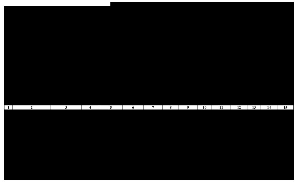 Акт вибуття (ліквідації) об'єкта права інтелектуальної власності у складі нематеріальних активів № _____ (Типова форма № НА-3)