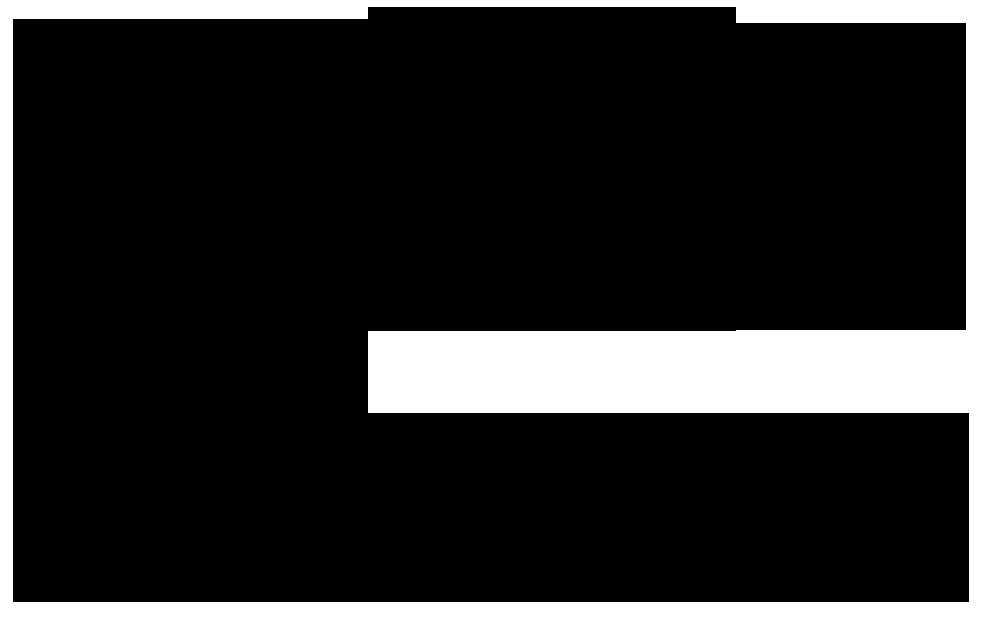 Інвентаризаційний опис об'єктів права інтелектуальної власності у складі  нематеріальних активів № _____ (Типова форма № НА-4)